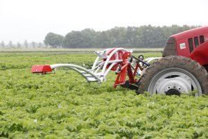 Variabel doseren fungiciden in aardappelen en/of bloembollen