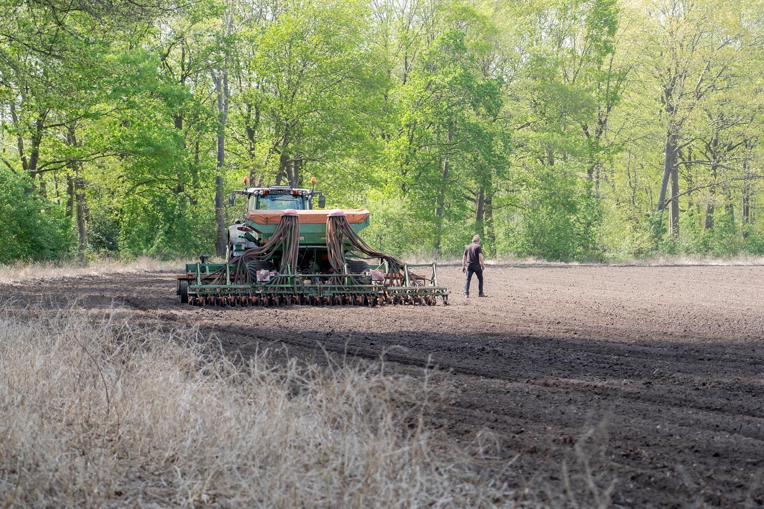 Rondom de uien heeft Van Leeuwen-Boomkamp zomertarwe gezaaid. Daardoor en door middelen i.v.m. spuitboombreedte, verdween de variatie in bodemherbicidedosering nagenoeg.